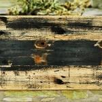 Reclaimed Cargo Wood Siding