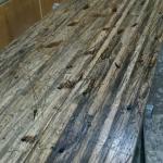 Cargo Plank Desktop